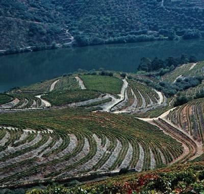 Para além da procura de Hoteis, Parques de campismo, Agências de Viagem, Restaurantes, etc, o Planeta Turismo, permite-lhe visualizar imagens locais da zona pretendida, em Portugal